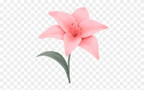 blooming flower gif png