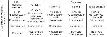 Понятие темперамента Реферат страница  Понятие темперамента 2