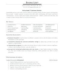 Key Skills For A Resume Enchanting Examples Of Key Skills In Resume Resume Ideas