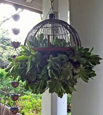 Cute Hanging Succulent Plant Ball for the Outdoor Garden, Patio ...