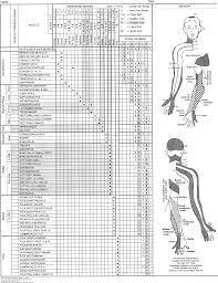 Musculoskeletal Examination Physical Rehabilitation 6e