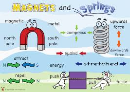 Image result for science magnets year 3