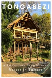 luxury tree house resort. Christina + Adam Luxury Tree House Resort