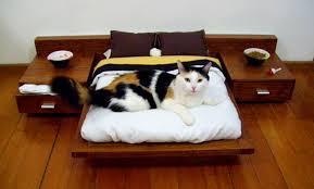 pets furniture. Custom Luxury Furniture For Your Pets U