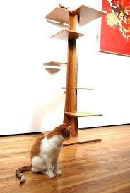 cool cat tree furniture. Designer Cat Furniture Tree Trendy Design With Book Shelves . Cool