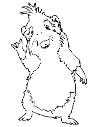 Small Picture Guinea Pig Standing Coloring Page Color Luna
