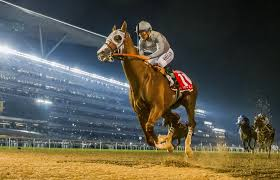 Uae Derby Entries Results And Prior Race History