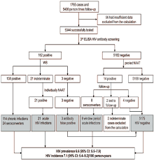 Flow Chart Of The Study Msm High Risk Population And Hiv