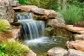 Small Picture Pond and water garden design build and maintenance
