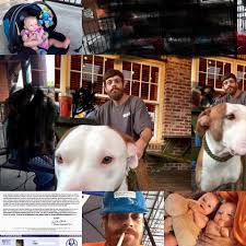 Chet and Lillian Griffith bulldog , Cain corso , and pitbull - Dog Trainer  - Meridian, Mississippi - 16 Photos | Facebook