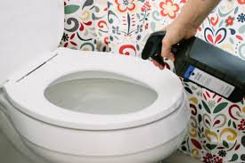 Best Way To Clean Bathroom Enchanting 48 Toilet Cleaning Tips That You've Probably Never Heard Before