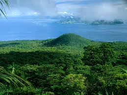 <b>Rainforest</b> and Amazon facts and information