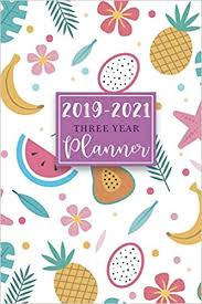 3 Year Calendar 2019 2021 Three Year Planner 36 Months Calendar Monthly Schedule