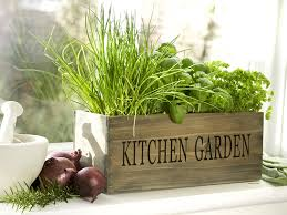 Unwins Kitchen Garden Herb Kit Kitchen Herb Garden Kit Windowsill Window Box Planter With Seeds