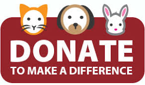 animal shelter donate. Unique Donate There Are Many Ways You Can Donate To The Lakeland Animal Shelter From An  Online Gift A Charitable Annuity Your Contribution Will Have  For Shelter Donate