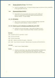 Resume For Computer Skills Lezincdc Com