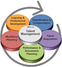 Talent Management System Department Of Administrative Services Divisions Human Resources