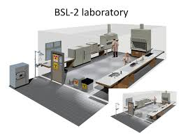 Bsl Labs Design Biosafety Cabinet Bsc What You Need To Know Ppt Download