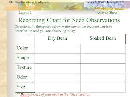 Plant Growth Observation Chart Resultado De Imagen Para Plant Growth Observation Sheet
