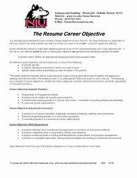 Examples Of Resume Objective Statements Career Change Resume Objective Statement Examples Elegant 12