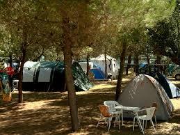Risultati immagini per Il campeggio immagini