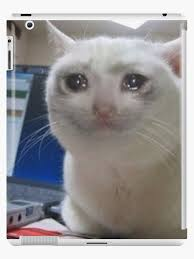 Image result for cry meme