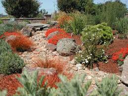 Small Picture 39 best Xeriscape Ideas images on Pinterest Landscaping ideas