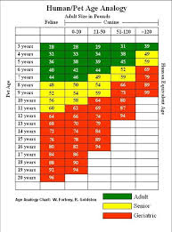 Age Conversion Chart Adult Dog Visits