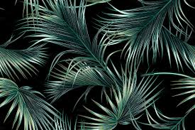 Palm Leaf Pattern Inspiration Tropical Palm Leaves Pattern Graphic Patterns Creative Market