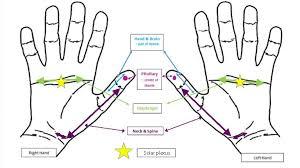 Hand Reflexology Chart Left Hand Got Back Pain This Hand Reflexology Can Help Quickly
