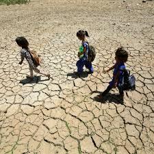 Ola de calor en India deja más de 40 muertos | El Informador