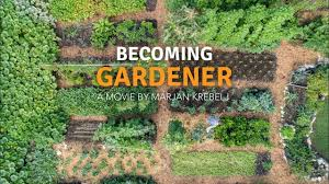 becoming gardener no dig vegetable garden with a tiny house