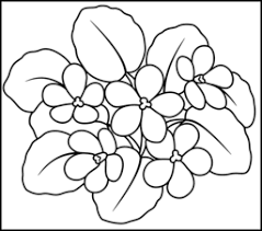 Flowers, flowers coloring pages, flowers coloring sheets, free flowers coloring pages, online flowers coloring pages, flowers pictures. Flowers Coloring Pages