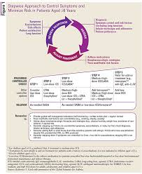 Asthma Medication Chart 2019 A Pharmacists Review Of Asthma