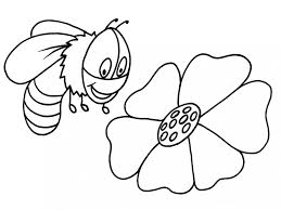 willi and the honey in maya the bee coloring pages or