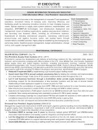 Executive Resume Sample Resume Sample 60 IT Executive Resume Career Resumes 5