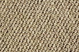 Berber Carpet Maple Grove Plymouth Rogers