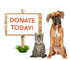 animal shelter donate. Fine Donate Monetary U0026 Credit Card Donations To Animal Shelter Donate D