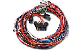 wiring harnesses nemos garage com hasport engine wiring harness aem ems 4 universal wiring harnesses