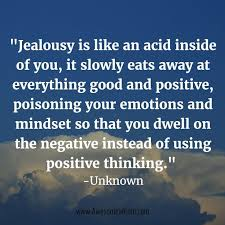 Insightful Quotes Custom Jealousy Quotes 48 Insightful Quotes Videos And Articles On