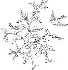 Small Picture Best 25 Bird coloring pages ideas that you will like on Pinterest