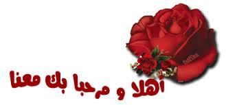 ترجيب بالمهندس طارق محمود