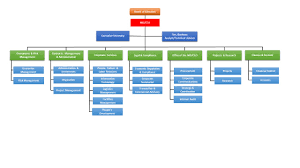 Corporate Organizational Chart With Board Of Directors Organizational Structure Nbet