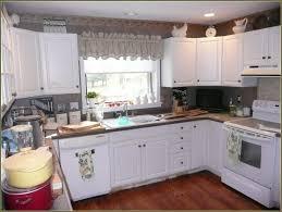 Laminate Cabinet Doors Peeling Home Design Ideas How Much Do Door