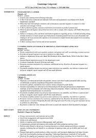 Download Caterer Resume Sample as Image file