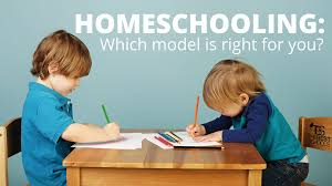 is homeschooling anti social the best schools homeschooling which model is right for you