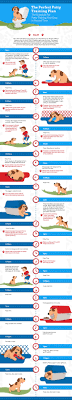 Puppy House Training Chart Crate Training A Puppy Fast The Dog Training Secret