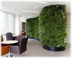 3 ways of improving office Air Quality