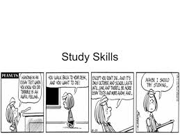 study skills tips for developing effective study habits ppt  1 study skills tips for developing effective study habits