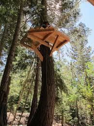 simple tree platforms. Brilliant Simple The Beginning Of An Ewok Village To Simple Tree Platforms I